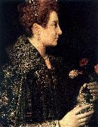 Profile Portrait of a Young Woman ANGUISSOLA  Sofonisba