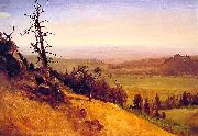 Newbraska Wasatch Mountains Albert Bierstadt