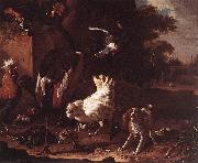 Birds and a Spaniel in a Garden sf HONDECOETER, Melchior d