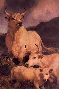 Wild Cattle at Chillingham Sir Edwin Landseer
