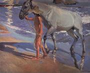The bathing of the horse Joaquin Sorolla Y Bastida