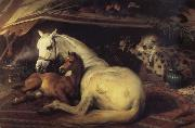 The Arab Tent Sir Edwin Landseer
