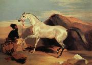 Arab stable ion Sir Edwin Landseer