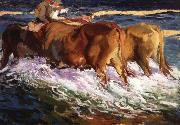 Oxen Study for the Afternoon Sun Joaquin Sorolla Y Bastida