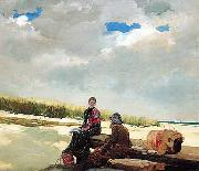Cloud Shadows Winslow Homer