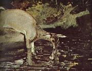 Deer drink Winslow Homer