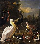 A Pelican and Other Birds Near a Pool, HONDECOETER, Melchior d
