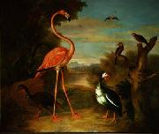 Flamingo and Other Birds in a Landscape Jakob Bogdani