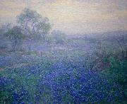 Cloudy Day. Bluebonnets near San Antonio, Texas Julian Onderdonk