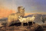 A Ewe with Lambs and A Heron Beside A Loch Richard ansdell,R.A.