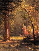 Dogwood by Albert Bierstadt Bierstadt