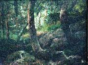 Interior of a forest Antonio Parreiras