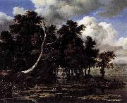 Oaks by a Lake with Waterlilies Jacob Isaacksz. van Ruisdael