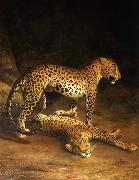Two Leopards Lying in the Exeter Jacques-Laurent Agasse