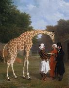 The Nuian Giraffe (mk25) Jacques-Laurent Agasse