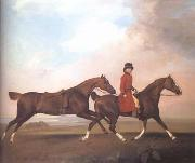 William Anderson with Two Saddle Horses (mk25) STUBBS, George