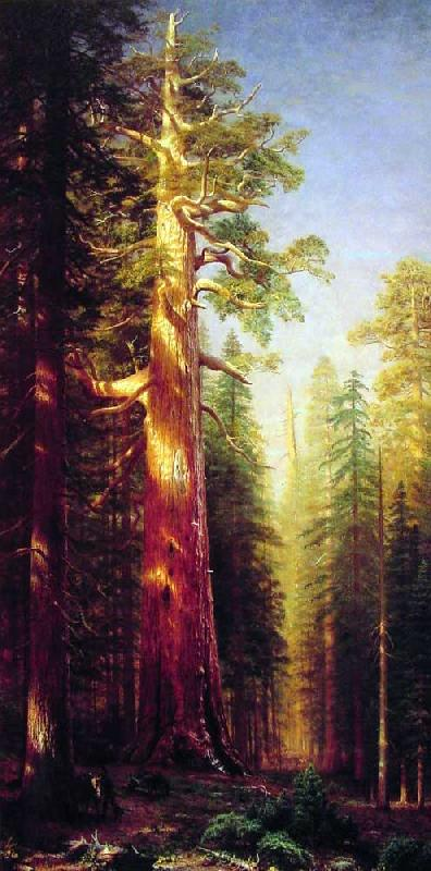 Albert Bierstadt The Great Trees, Mariposa Grove, California