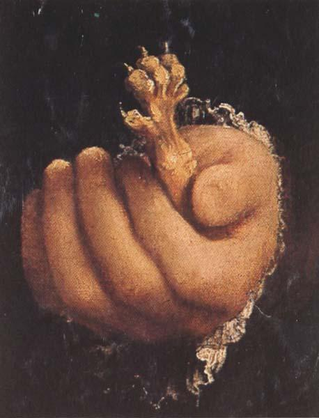 Lorenzo Lotto Man with a Golden Paw (mk45)