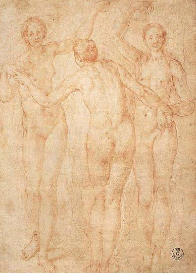 Jacopo Pontormo Three Graces