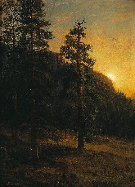Albert Bierstadt California Redwoods