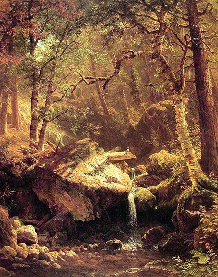 Albert Bierstadt The Mountain Brook