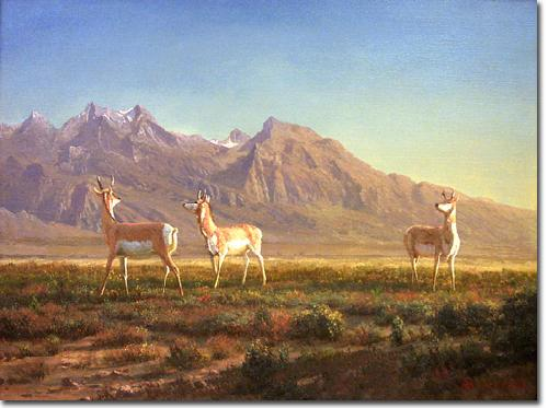 Albert Bierstadt Prong-Horned Antelope