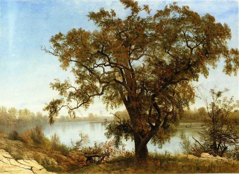 Albert Bierstadt A View From Sacramento