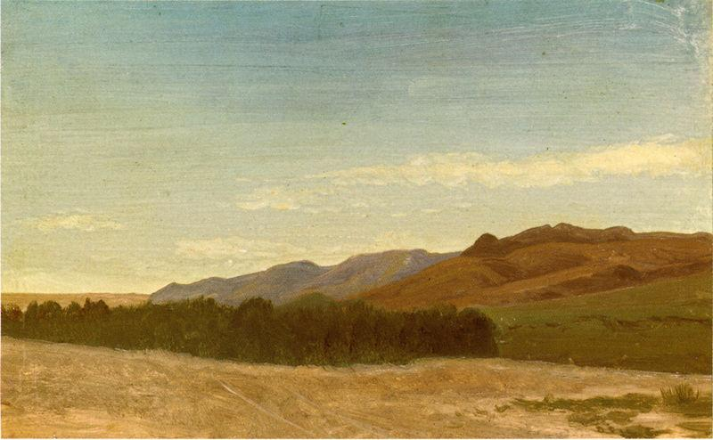 Albert Bierstadt The_Plains_Near_Fort_Laramie