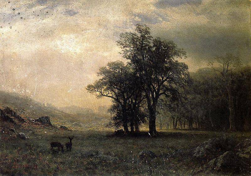 Albert Bierstadt The Open Glen, New England