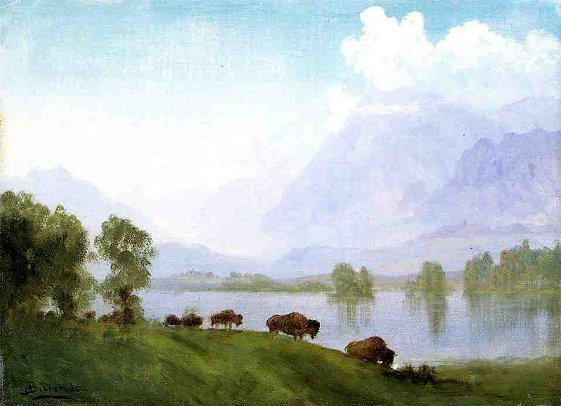 Albert Bierstadt Buffalo Country
